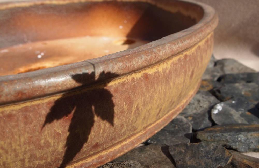 Texture céramique bonsai 18